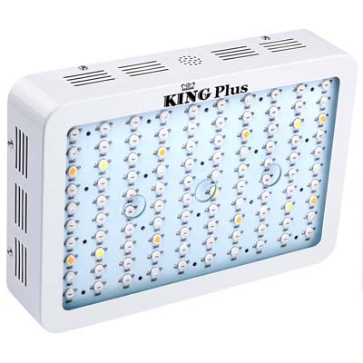 King Plus 1000 Watt