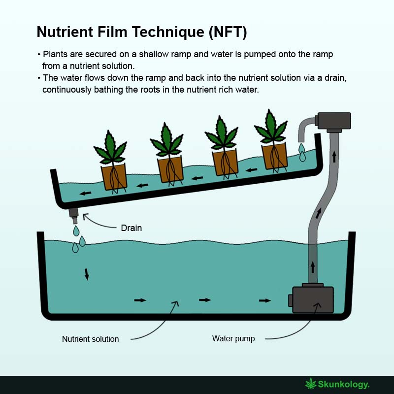 How does NFT work?