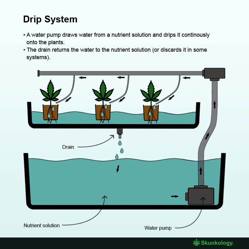 How does drip hydroponics work?