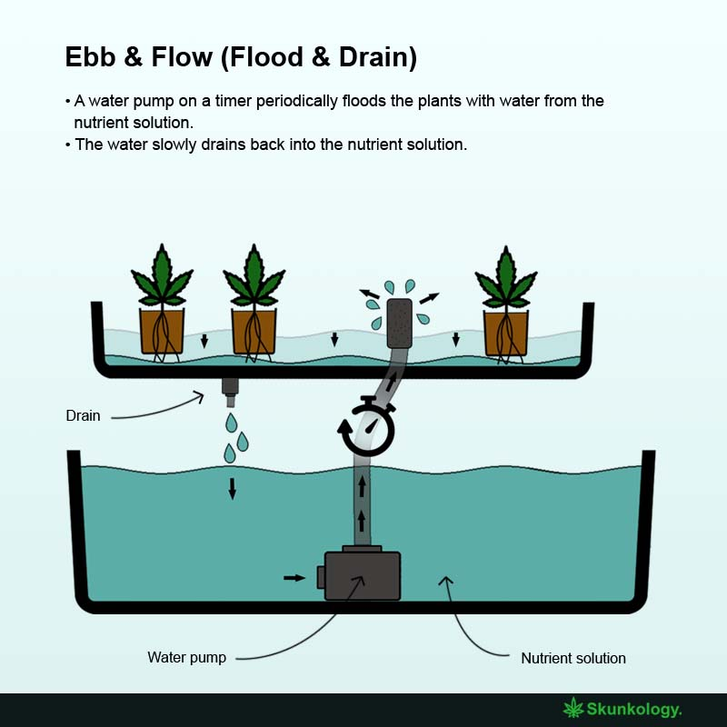 How does ebb and flow hydroponics work?