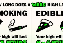 how long does a weed high last