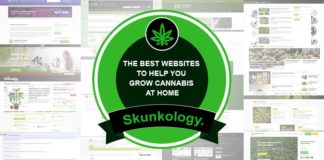 the best websites to help you grow cannabis at home